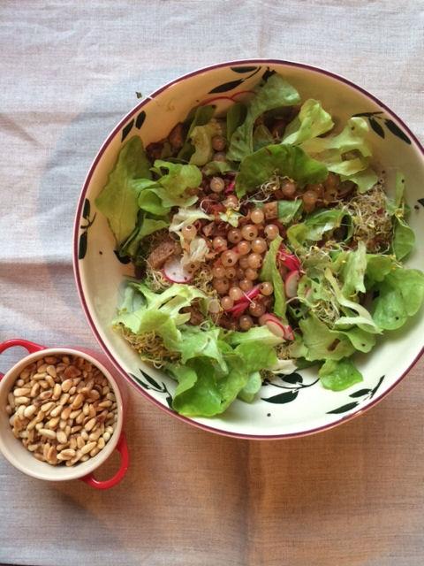 salade germée